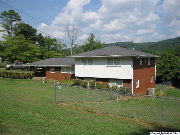 3009 S.W. Alabama Avenue, Fort Payne, AL 35967 Photo 2