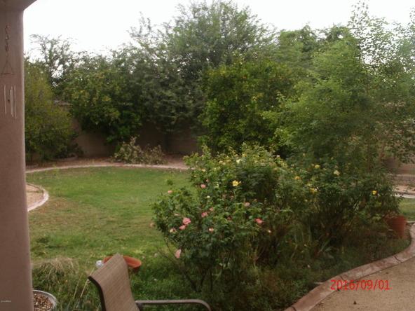 14566 W. Mulberry Dr., Goodyear, AZ 85395 Photo 9