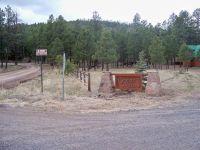Home for sale: Lot 9 Greer Acres, Greer, AZ 85927