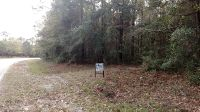 Home for sale: W./S. Belle Hammock 3 Acres, Townsend, GA 31331