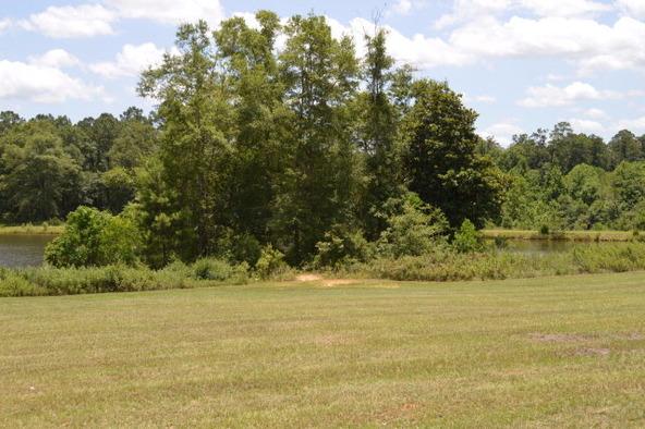 306 Turtleback Trail, Enterprise, AL 36330 Photo 22