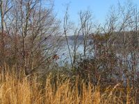 Home for sale: Docks Of The Bay Lot# 52, Harriman, TN 37748