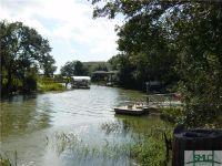 Home for sale: 34 Vista Point Dr., Savannah, GA 31406