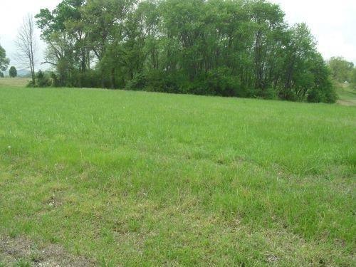 25 Grazeland Dr., Monticello, KY 42633 Photo 6