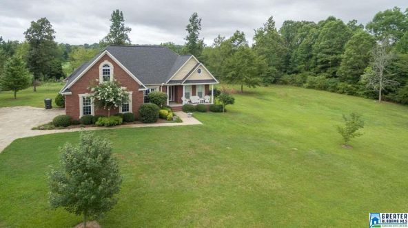 440 Brooks Lake Rd., Lincoln, AL 35096 Photo 40