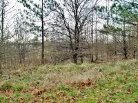 Home for sale: Lot 82&37a Garrett Maxwell Rd., Anderson, SC 29626