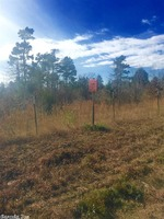 Home for sale: Tbd Batesville Mountain Rd., Guy, AR 72061