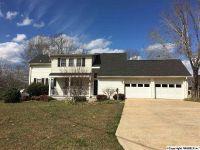 Home for sale: 295 Embos Island St., Leesburg, AL 35983
