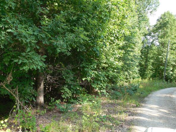 20+/- Acres Hwy. 431, Roanoke, AL 36274 Photo 4