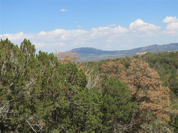 0 Pinon Park Trail, Sandia Park, NM 87047 Photo 19