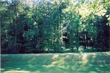 Scenic View Sub. Lots, Sevierville, TN 37862